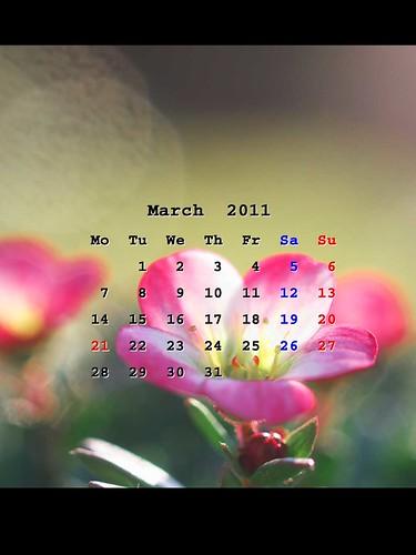 201103_iPadWP