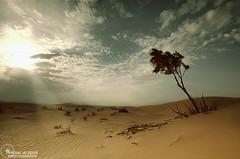 II..Desert Story..II #EXPLORE# (Faisal Alzeer) Tags: nikon desert  faisal   sigma1020       fnz d300s  alzeer abonasser  300