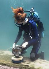 Cleaning the fish tank IMG_0614 (OZinOH) Tags: columbuszoo columbus ohio zoo scuba cleaning columbusohio diver columbusoh scubadiver