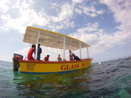 Jamaica Vacation, Negril, Treasure Beach, Montego Bay Feb 4 to 11 2011           -6