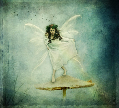* Dance of the Mushroom Faery *