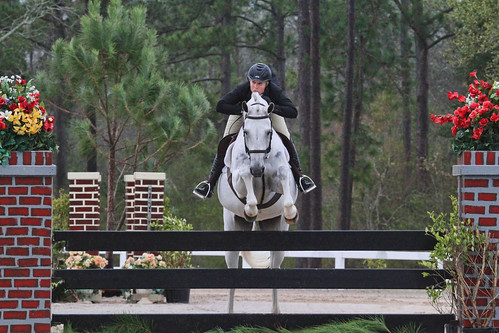 hunter jumper, hunter judge, hunter judging, hunter judge canada, hunter judge USA, hunter judge ontario, horse training, what the hunter judge is looking for