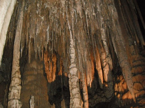 Cockle Creek , Hastings Caves , Warm Spr by Ianz, on Flickr