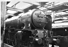60145 (St Mungo) at York (Spearmint100) Tags: york uk steam a1 railways sixties locomotives stmungo uksteam 60145