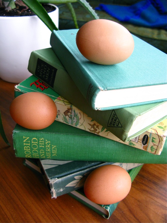 brown eggs green books eating healthy 003