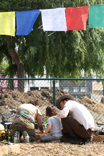 Micheltorena School Garden