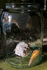 Jar & Seashells (prima seadiva) Tags: shadow shells reflection jar naturemorte