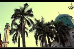 Masque, Sialkot City, Pakistan. (Othman Ch) Tags: bazar wala masjid ch masque usman chowk iqbal othman dramma doonga allama choudhry 00965 choudhryuhotmailcom choudhryu choudhryuyahoocom 0096594418559 94418559 96594418559