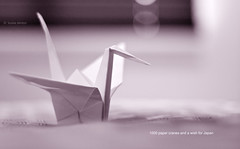 Thinking of Japan (Louise Denton) Tags: japan hope earthquake origami crane tsunami tragedy papercrane disaster wish appeal
