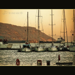 "Preset ""Golden Moment"" (in eva vae) Tags: pink blue sea sky italy orange sunlight seascape art water yellow alberi clouds port marina photoshop sunrise watercolor boats golden coast pier boat seaside marine eva soft paint italia mare ship barcos framed liguria ships barche canvas salvagente bow cape mast lifebuoy colori arancio squared poppa textured lightroom aft pontile laspezia pastelcolor layered baia prua promontorio preset vele porticciolo banchina pastello digitalcameraclub attracco scafi inevavae mygearandme olympussp510ultrazoom"