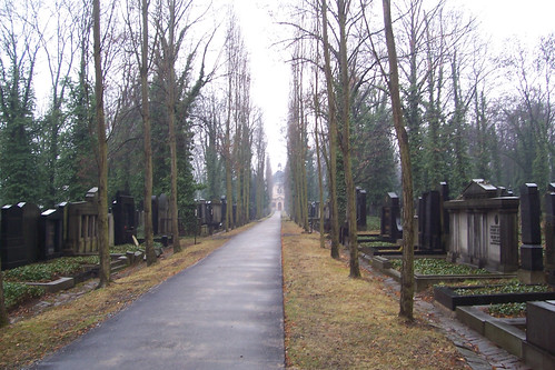 Thumbnail from New Jewish Cemetery