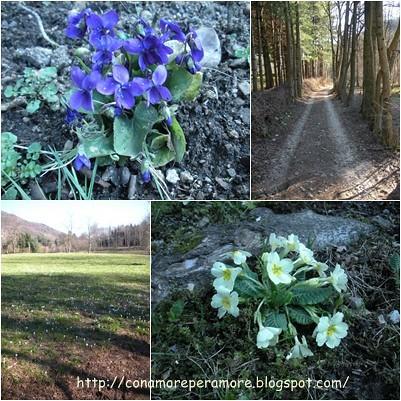 natura marzo 2010