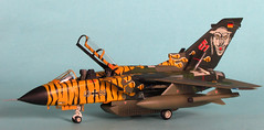 Tornado IDS 43+96 Tiger Meet (dm.miniatures) Tags: scale toy miniatures model fighter military kit tornado 172 hasegawa ids enamel tigermeet jetaircraft fighterbomber modelmaster tornadoids modernjet