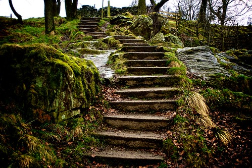 Natures winding stairway by Crag O