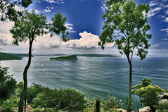 Ku Ring Gai (Dawn Woodhouse) Tags: park new green nature beautiful beauty wales landscape bush nikon natural south sydney australia national nsw popular pittwater kuringgai musictomyeyes photohobby nikond90 peaceawards dawnwoodhouse pegasusaward bestpeopleschoice photographyforrecreation theelitephotographer