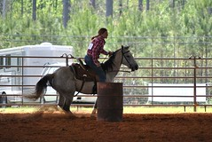 Clinton Arena Horse Show 28/30 (Marsh, D.) Tags: show horse woman phoenix lady nikon louisiana barrels clinton gray arena trail riding western poles rider equine equus quarterhorse placed participating greymare d3000 deesnke marshd