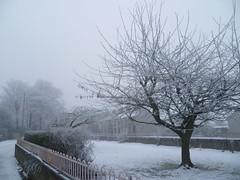 Snowed Dundalk