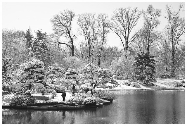 2011-03-27 Missouri Botanical Garden 14
