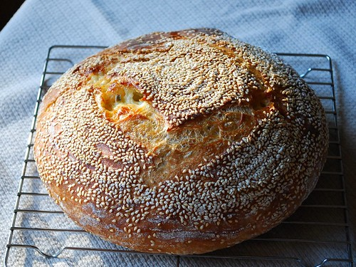 pepper jack cheese bread 2