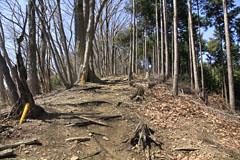 市道山への道