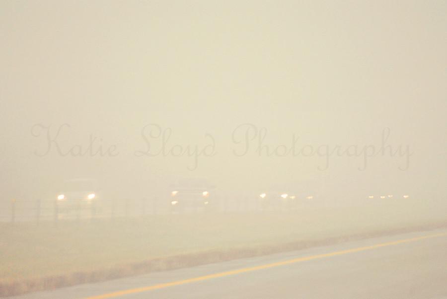 Fog---wm