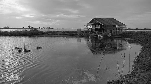 Tanjung Burung #6