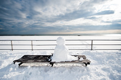 Waiting for Nemo (navid j) Tags: ocean nyc newyorkcity winter snow newyork storm beach bench coneyisland snowman solitude alone horizon snowstorm atlantic gothamist brightonbeach 201101276720
