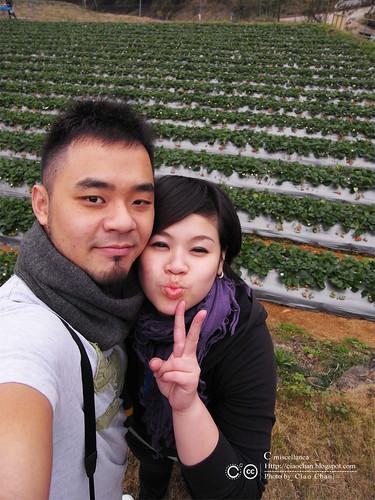 大湖草莓之旅 - 大力推薦 大山農園 R1039343