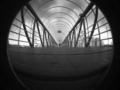 Lo-Fi Walkway (The Hamster Factor) Tags: bridge lomo lomography footbridge sweden gothenburg fisheye walkway ratseyeview