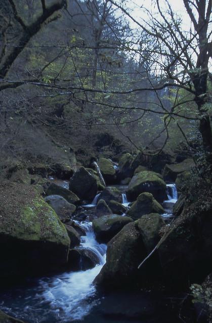 渓谷のフリー写真素材