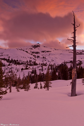 316/365 - Sunset