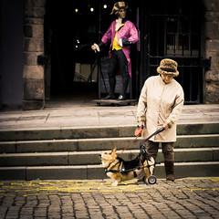 Finished? (Stewart R) Tags: street woman hat canon 50mm corgi edinburgh wheels royal cobbles mile lawnmarket candidandstreet