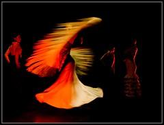 Flamenco (Flavio~) Tags: