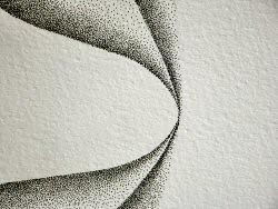 Dessin à l'encre, au point, sur papier aquarelle représentant une architecture végétale inspirée d'un pétale. Ce gros plan représente deux pointes qui se touchent – Sandrine Vallée