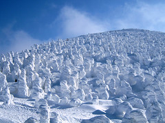 [フリー画像] 自然・風景, 雪, 霧氷, 日本, 宮城県, 201105052300