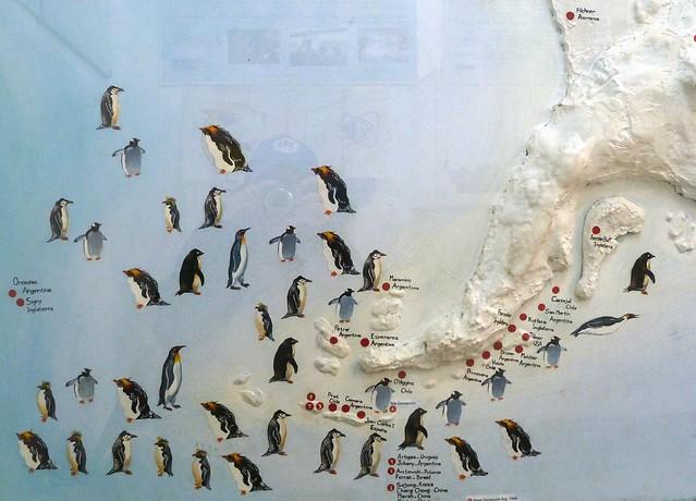 A map for penguins nerds eye view penguin map publicscrutiny Images