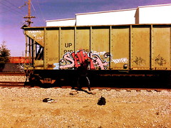 (Pastor Jim Jones) Tags: graffiti action suka lcm bemer