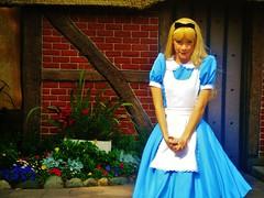 Alice (Elysia in Wonderland) Tags: world uk flowers blue holiday cute orlando epcot florida alice disney pavilion wonderland elysia 2011 disneyphotochallengewinner