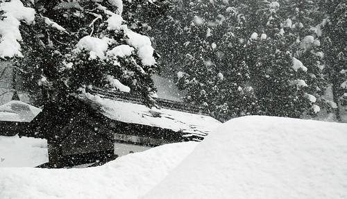 Snow in Sakae Mura