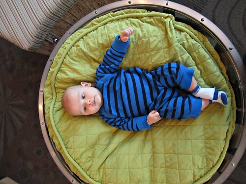 Henry is one of the baby loungers