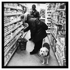 """""""The Dog That Was Taken to the Pharmacy"""" (Sion Fullana) Tags: nyc urban blackand"""