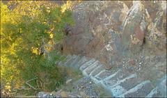 C360_2011-02-23 17-49-22 (MagicPAD - الكعبي) Tags: uae الإمارات الجزيرة الظاهر ناصر الكعبي الخطوة مصح محضة