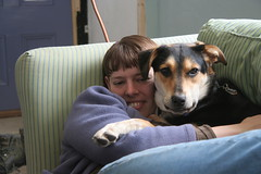 puppy snuggles (elizajanecurtis) Tags: dog couch laika eliza
