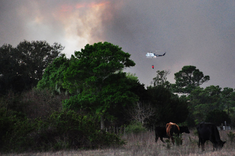 web_florida_wildfire_0109