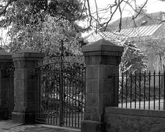 Cruickshank Botantic Gardens (Rosa Alba Macdonald) Tags: roof heritage scotland aberdeen listedbuildings oldaberdeen