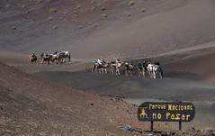 Parque Nacional de Timanfaya II