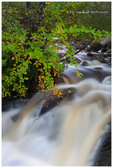 Hints of Fall (Dylan Toh) Tags: autumn fall water leaves landscape flow photography scotland loch dee clair torridon kinlochewe everlook