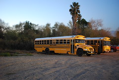 FS 101571 (crown426) Tags: california vision corona bluebird lpg schoolbus conventional softballtournament firststudent butterfieldpark liquidpropanegas