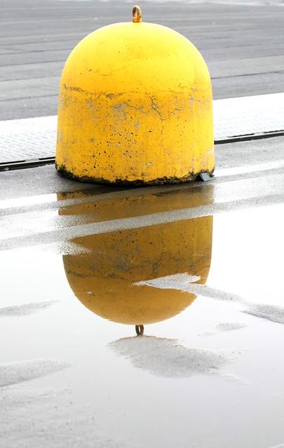 Giallo e pioggia