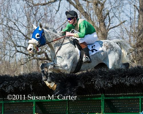 Meshwaar steeplechase horse racing